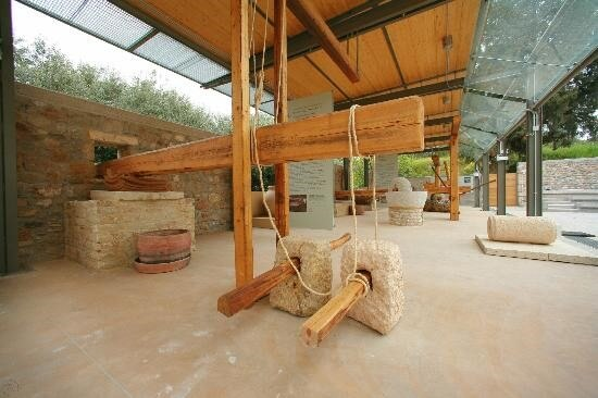 museum of olive oil